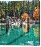 Fall At Skunk Harbor Lake Tahoe Canvas Print