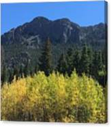 Fall At Twin Sisters Canvas Print