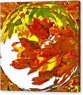 Fall Ball Canvas Print