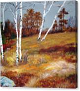 Fall Birch Trees And Blueberries Canvas Print