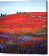 Fall Blueberries 1 Canvas Print