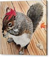 Fall Bonnet Canvas Print