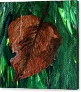 Fall Brown Leaf Canvas Print