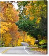 Fall Color Along Road  5643 Canvas Print