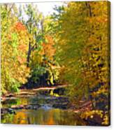 Fall Color On Creek  5597 Canvas Print