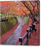 Fall Colors Along Bending River In Kyoto Canvas Print