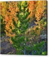 Fall Colors Along Dillon Reservoir Canvas Print