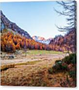 Fall Colors At Alpe Devero Canvas Print