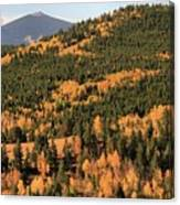 Fall Colors At Rocky Mountain National Park Canvas Print