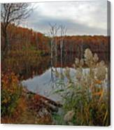 Fall Colors At The Reservoir Canvas Print