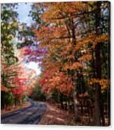 Fall Colors Backroad Canvas Print