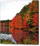 Fall Colors In Madbury Nh Canvas Print