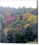 Fall Colors In Rockbridge County Canvas Print