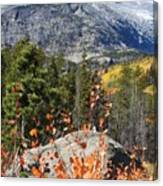 Fall Colors In Rocky Mountain National Park Canvas Print