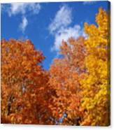 Fall Colors In Spokane Canvas Print