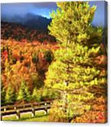 Fall Colors On Grandfather Mountain Ap Canvas Print