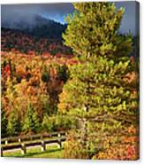 Fall Colors On Grandfather Mountain Canvas Print