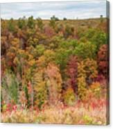 Fall Colors On Hillside Canvas Print