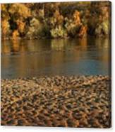 Fall Colors On The Rio Grande 1 Canvas Print