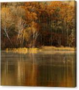 Fall Cove Canvas Print