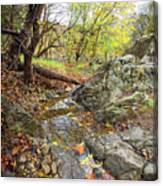 Fall Creek View Canvas Print