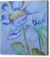 Fall Daisy Canvas Print
