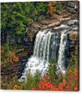 Fall Falls 2 Canvas Print