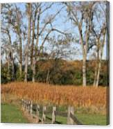 Fall Fence Canvas Print