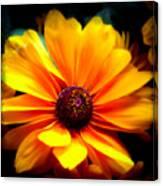 Fall Flower 2.0 Canvas Print