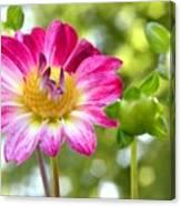 Fall Flower Garden Canvas Print