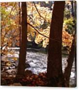 Fall Flows Canvas Print