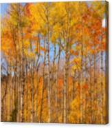 Fall Foliage Color Vertical Image Orton Canvas Print
