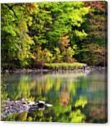 Fall Foliage Reflection Canvas Print