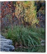 Fall Foliage Reflections At Lost Maples Canvas Print