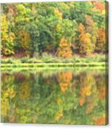 Fall Forest Reflection Canvas Print
