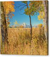 Fall From Oxbow Bend In Grand Tetons Canvas Print