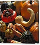 Fall Fruit And Vegetables  Canvas Print