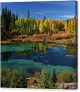 Fall  Canvas Print