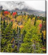 Fall In Baxter State Park Maine Canvas Print
