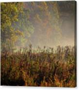 Fall In Cades Cove Canvas Print