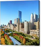 Fall In Chicago Canvas Print