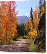Fall In Colorado Canvas Print