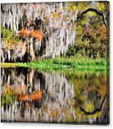 Fall In Florida Canvas Print