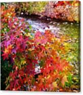 Fall In Gatlinburg Canvas Print