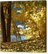 Fall In Kaloya Park 3 Canvas Print