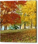 Fall In Kaloya Park 9 Canvas Print