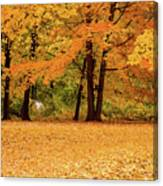 Fall In Lindstrom Canvas Print