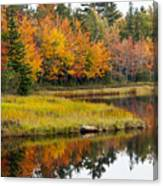 Maine Fall Canvas Print