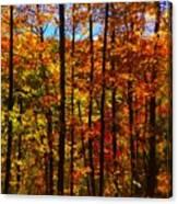 Fall In Ontario Canada Canvas Print