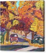 Fall In Santa Clara Canvas Print